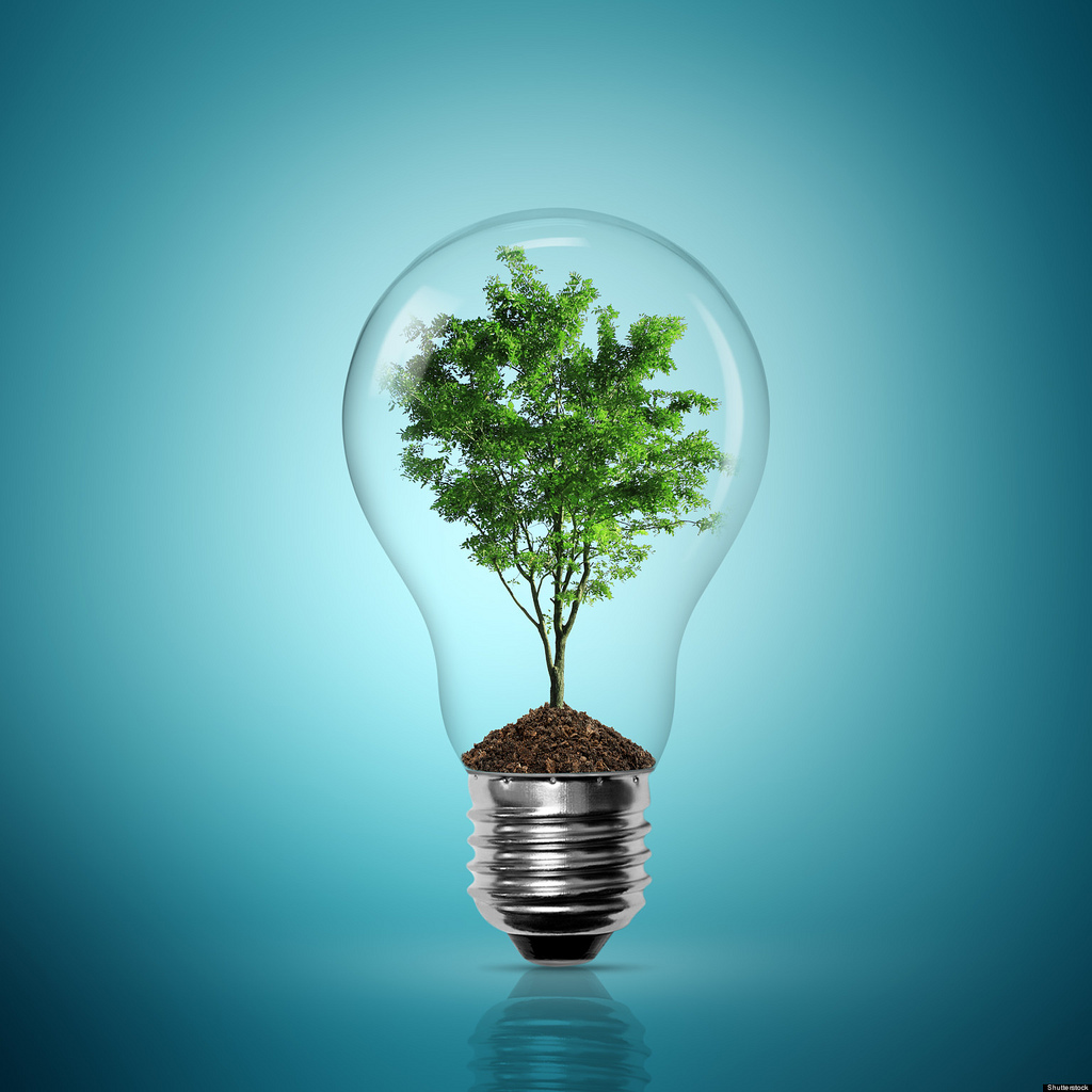 bulb-light-with-tree-inside-on-blue-background